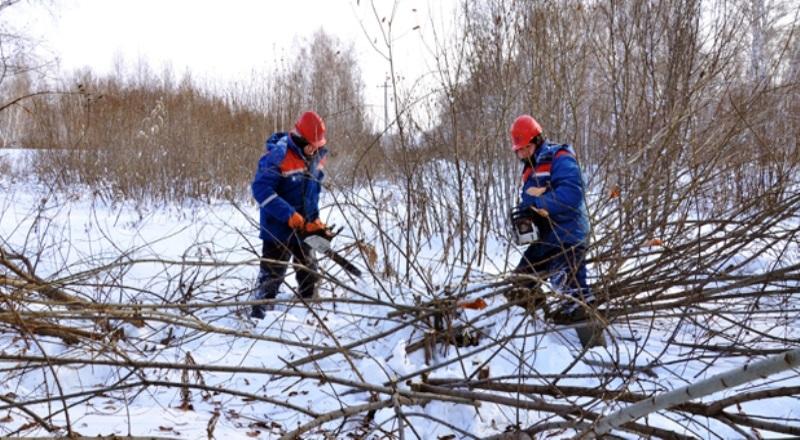В Кузбассе завершились практические учения энергетиков, спасателей и лесников