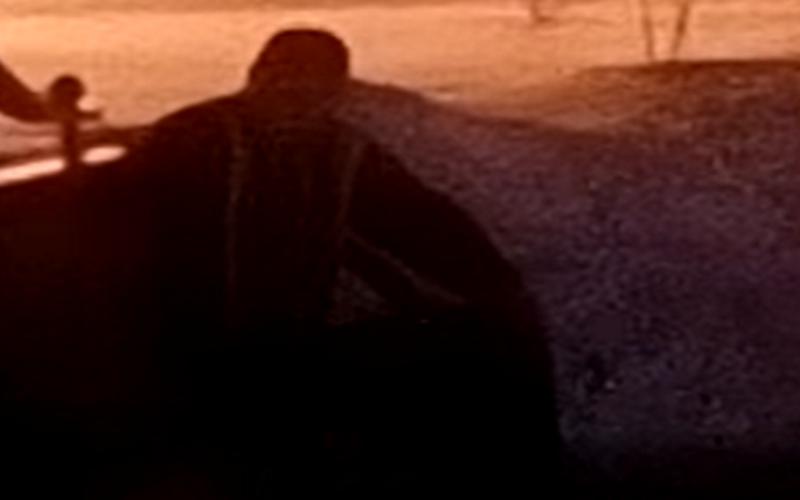В Мысках молодой парень с поварешкой и босиком разгуливал по парку «Школьный»