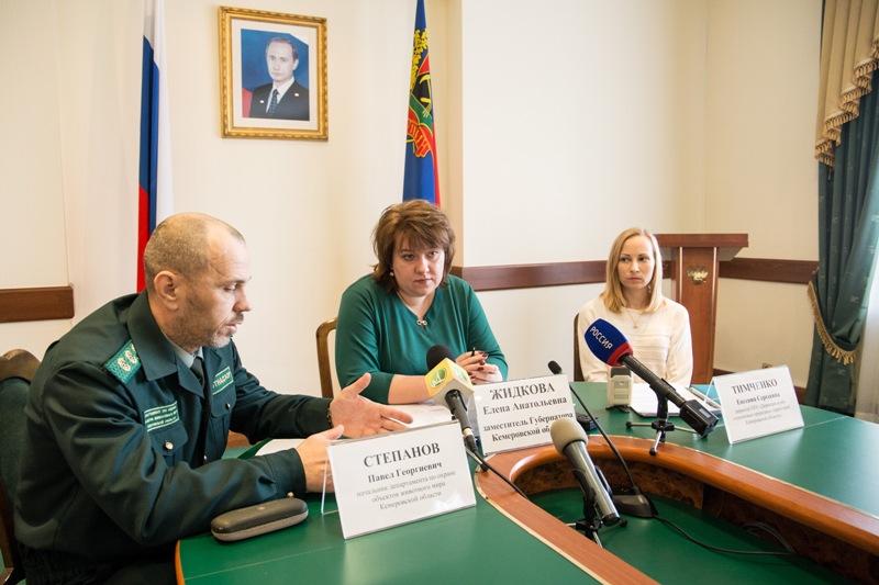 Новые особо охраняемые природные территории появятся в Кузбассе в 2017 году