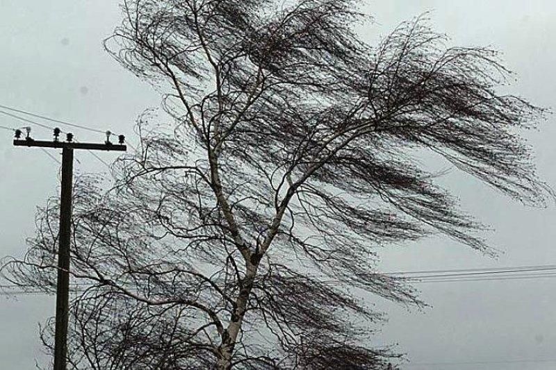 Штормовое предупреждение объявлено в Кузбассе