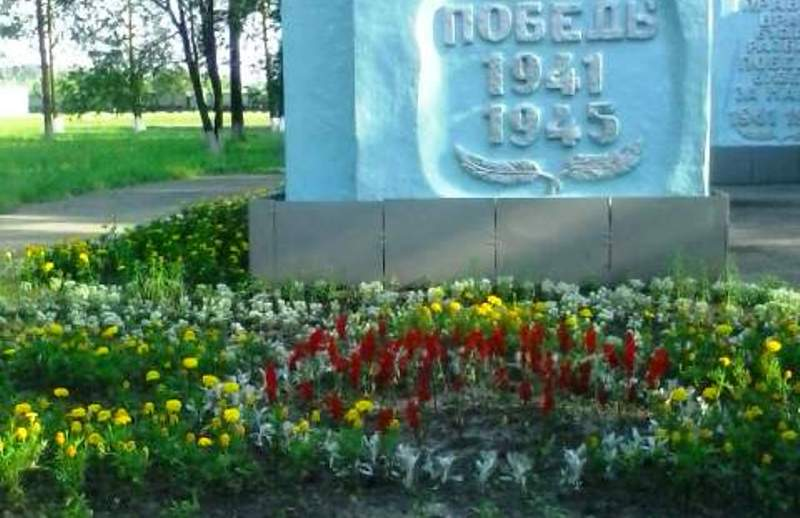 В микрорайоне ГРЭС начинают гибнуть цветы на клумбах