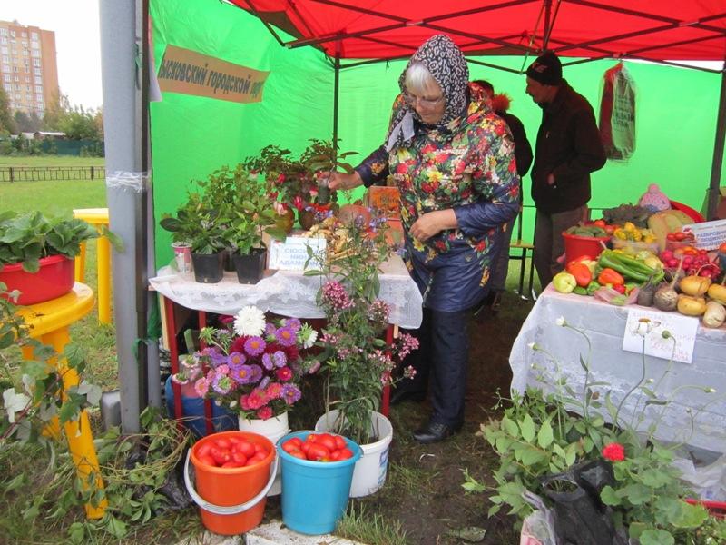 Садоводы Мысков приняли участие в областной ярмарке «Сад и огород. Урожай-2017» в Кемерово