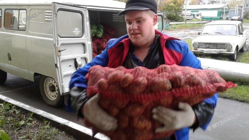 Волонтёры доставляют овощные наборы инвалидам и ветеранам Мысков