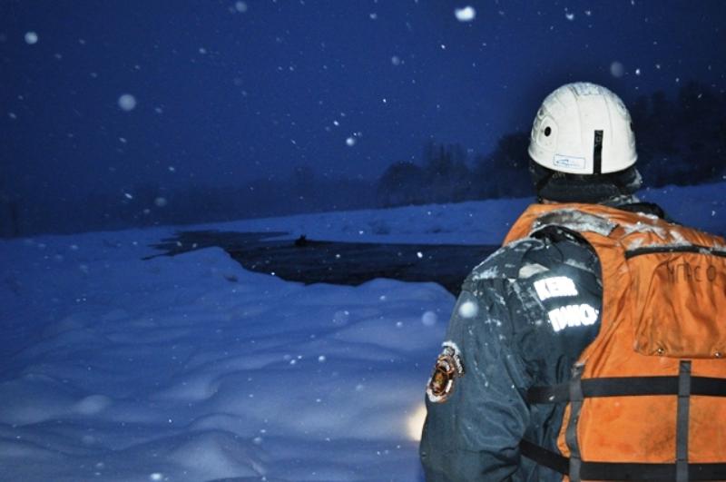 Сотрудники заповедника «Кузнецкий Алатау» спасли лосей из полыньи
