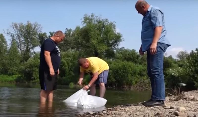 В реку Тутуяс в Мысках выпустили пять тысяч мальков
