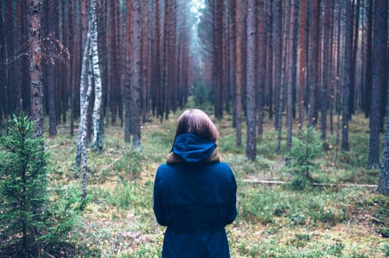МЧС Кузбасса напоминает о правилах поведения в лесу