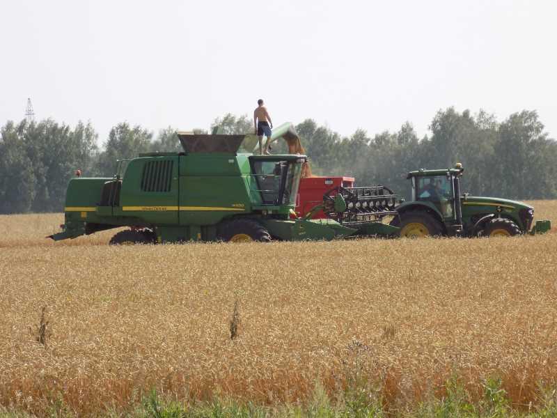 В Кузбассе началась уборка зерновых