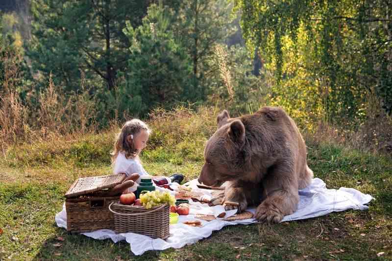 В Кузбассе объявили карантин из-за заразного медведя