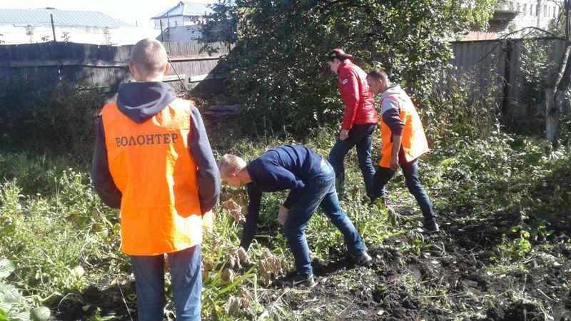 В Мысках добровольцы оказывают помощь ветеранам в уборке урожая