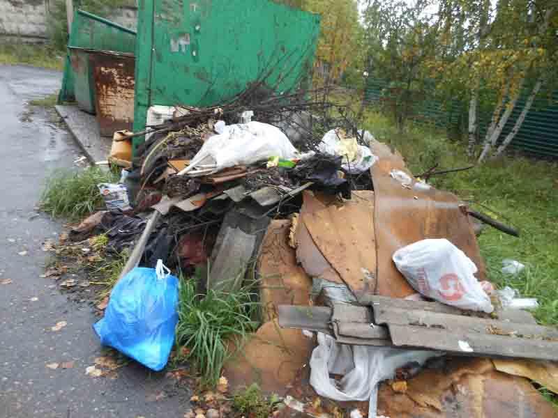 Работа компании по вывозу мусора в Мысках продолжает расстраивать горожан