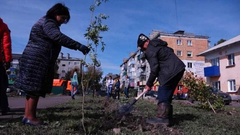 В единый день посадки деревьев Мыски украсились новыми саженцами деревьев и кустарников