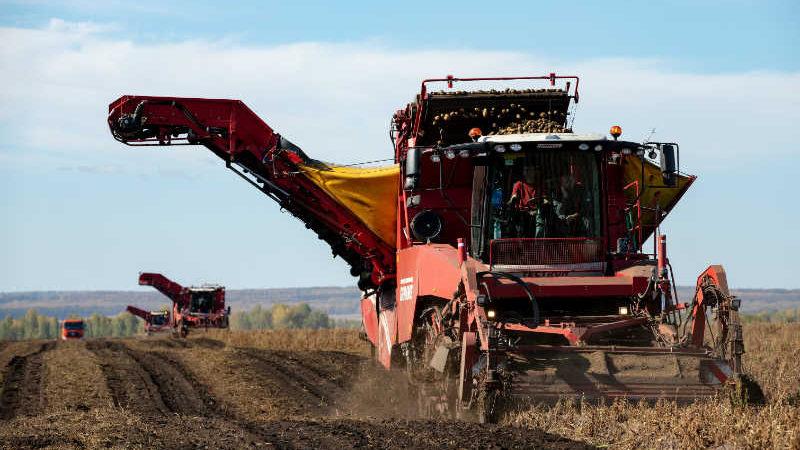 Кузбасс — один из лидеров по уборке урожая среди регионов Сибири