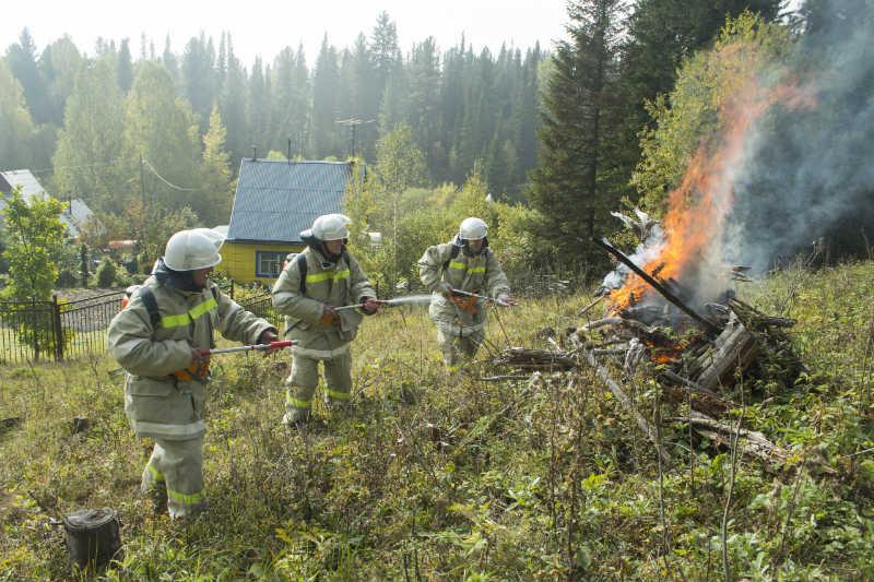 В мысковском поселке Камешек прошел субботник, в рамках профилактической акции «Чистый лес — территория без огня»