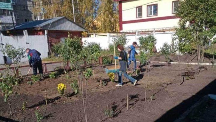 Предприниматели Мысков пополнили зеленое убранство города новыми растениями