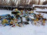 В городах Кузбасса проведут замеры накопления твердых коммунальных отходов