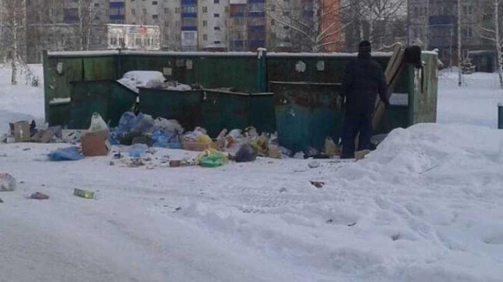 Мысковчане недовольны вывозом мусора