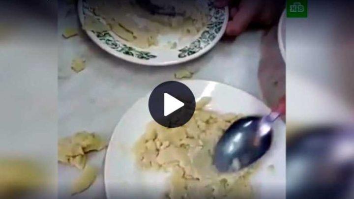 «Собачья» еда кузбасских школьников заинтересовала Совет Федерации
