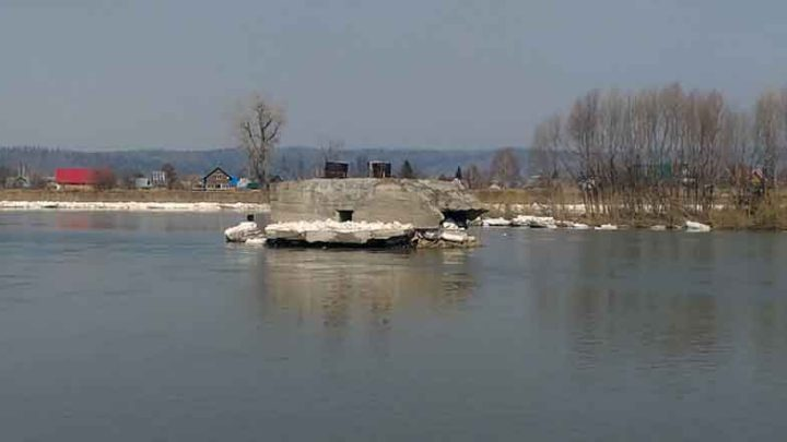 Решено. На реке Мрас-Су с ледореза успешно спасены собаки