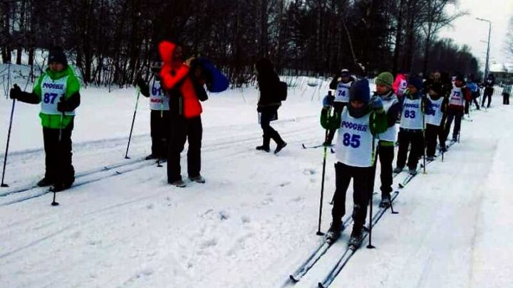 На лыжной трассе «Бородинская» прошло Первенство Мысков по лыжным гонкам, среди воспитанников лыжных школ