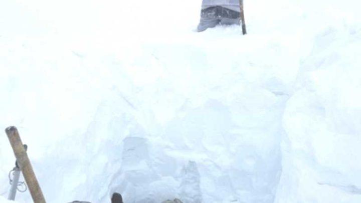 Глубина залегания снега в тайге составляет от 220 до 377 см.